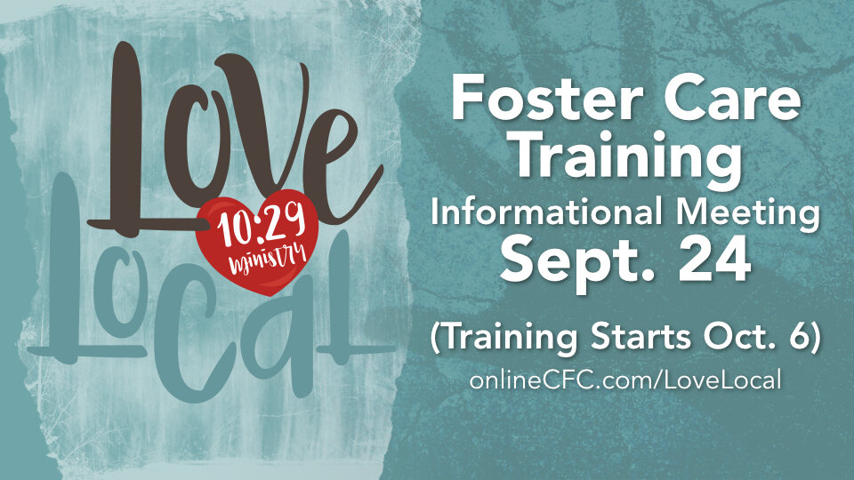 lovelocal fostertraining 960x